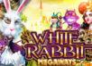 White Rabbit Slot– följ med kaninen till underlandet