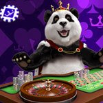 Royal Panda recension