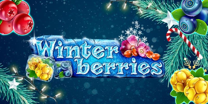Winter Berries - jul slot